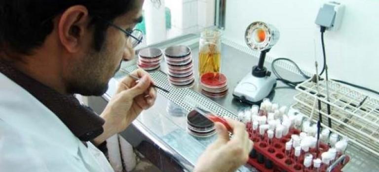 اعلام نتایج جذب هیأت علمی وزارت بهداشت در نیمسال اول ۹۶